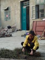 小额信贷助农村妇女致富
